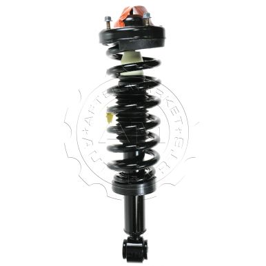 ... F150 Truck Front Strut Assembly for 2WD Models ( Monroe Quick-Strut